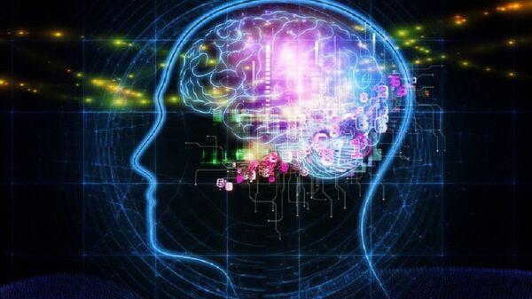 El cerebro (ilustración) - Sputnik Mundo