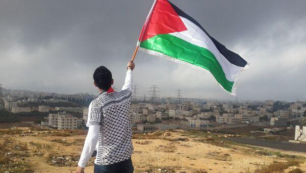 Bandera de Palestina (archivo) - Sputnik Mundo