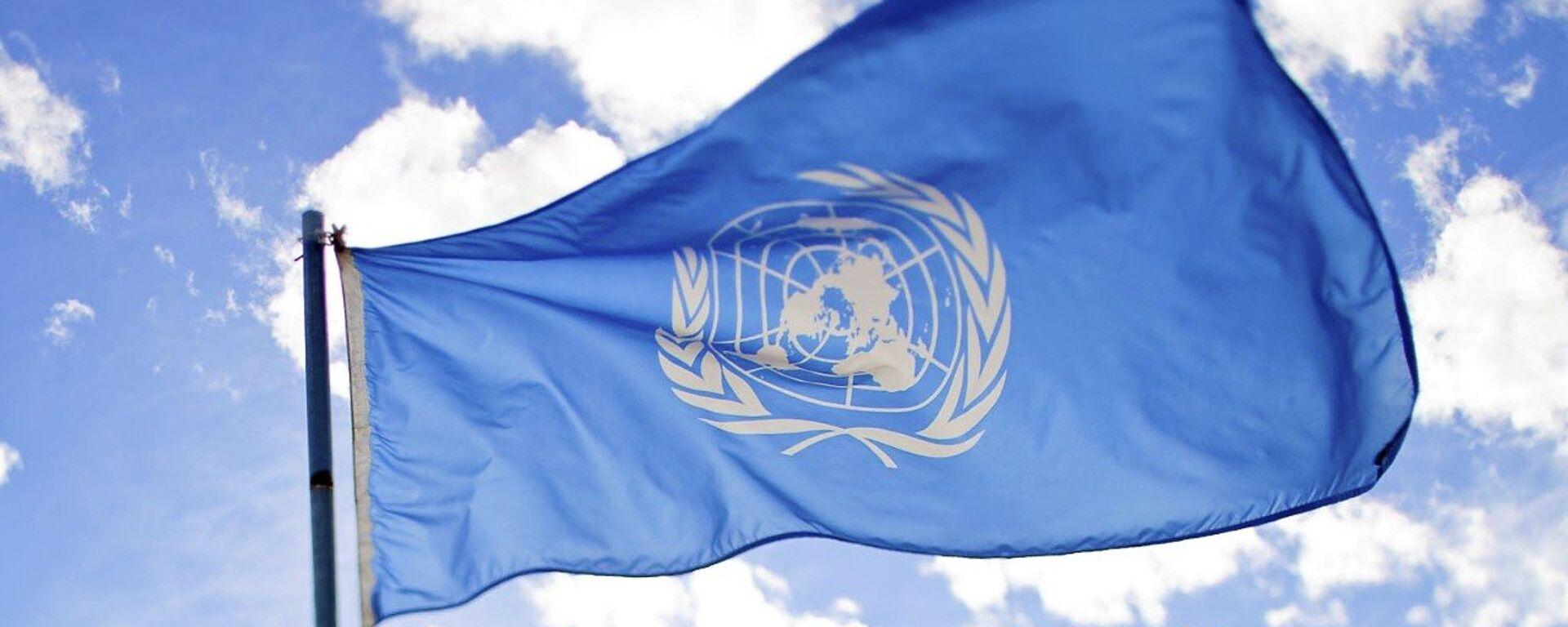 La bandera de la ONU - Sputnik Mundo, 1920, 17.06.2021