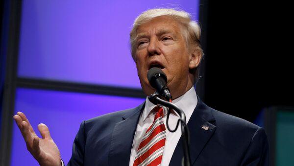 Donald Trump, el presidente electo de EEUU - Sputnik Mundo
