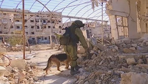 Zapadores rusos en Siria - Sputnik Mundo