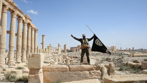 Militante del grupo Halcones del Desierto con la bandera de Daesh en Palmira - Sputnik Mundo