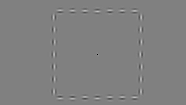 Déjate engañar por la mejor ilusión óptica de 2016 - Sputnik Mundo