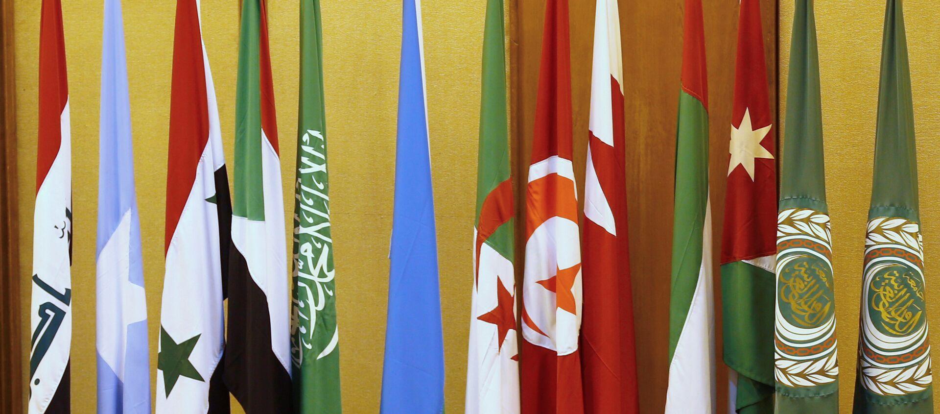Banderas de los países de la Liga Árabe en El Cairo - Sputnik Mundo, 1920, 11.11.2020