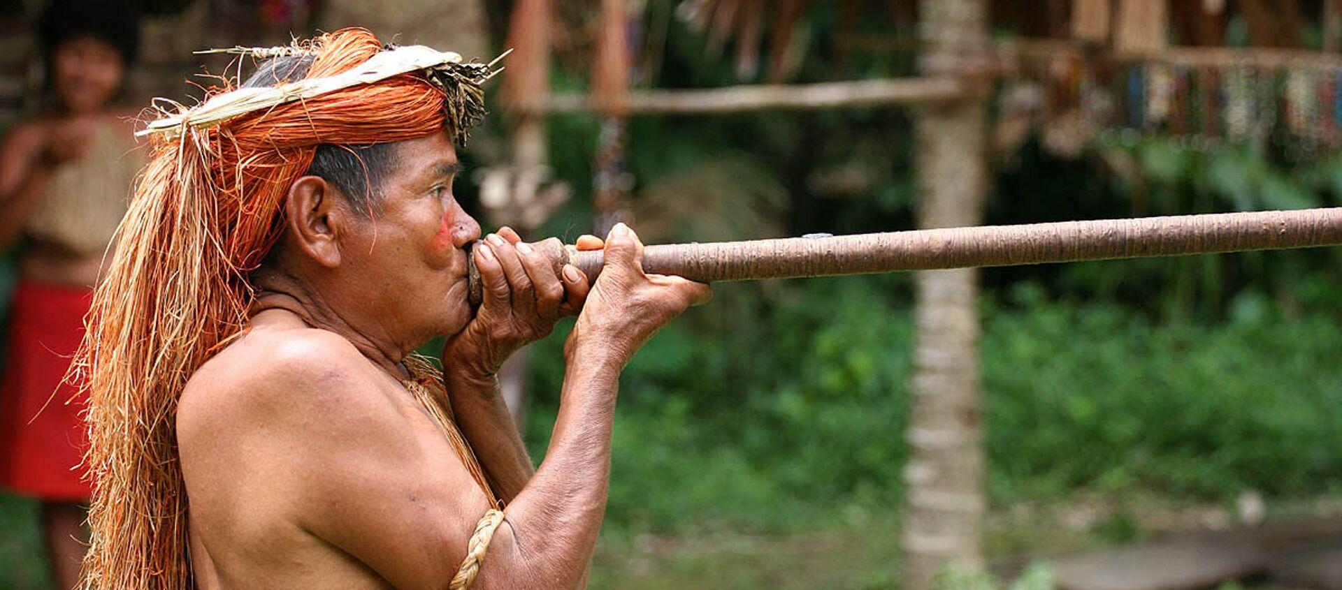 Indígena de la Amazonía peruana - Sputnik Mundo, 1920, 03.02.2021