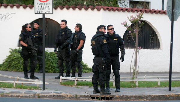 Special forces police are seen close to the house of Codelco's Chilean chairman of the board, Oscar Landerretche, who suffered minor injuries after receiving a package that exploded at his home, in Santiago, Chile - Sputnik Mundo
