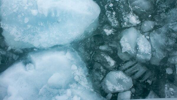 Hielo en el agua - Sputnik Mundo
