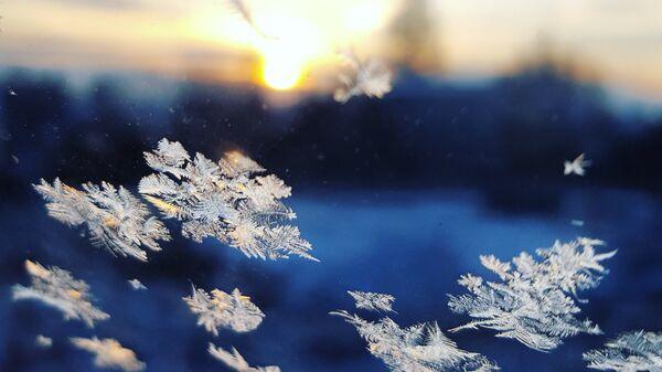 Copos de nieve (ilustración) - Sputnik Mundo