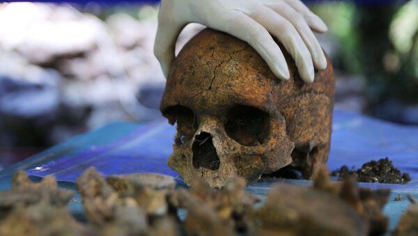 El cráneo de una persona - Sputnik Mundo
