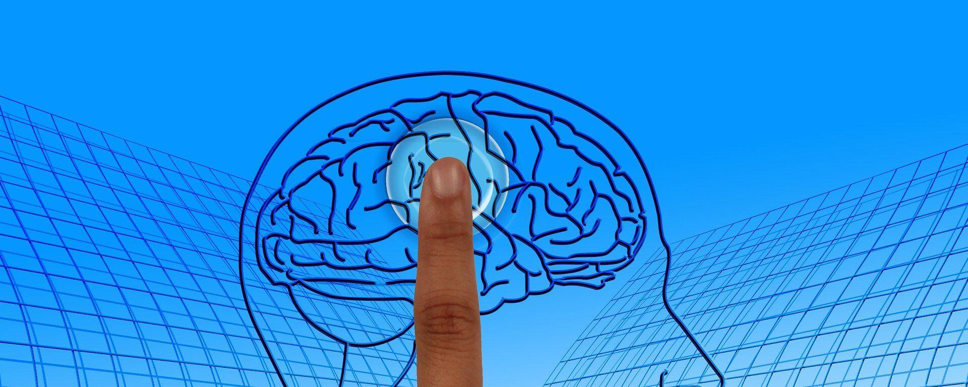 Cerebro humano (ilustración) - Sputnik Mundo, 1920, 01.06.2020