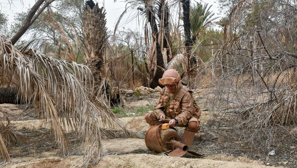 Militar ruso en Palmira - Sputnik Mundo