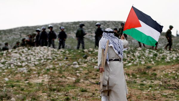 Un hombre con la bandera de Palestina - Sputnik Mundo