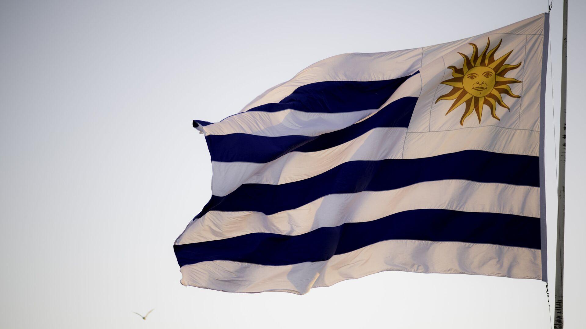 Bandera de Uruguay - Sputnik Mundo, 1920, 11.03.2021