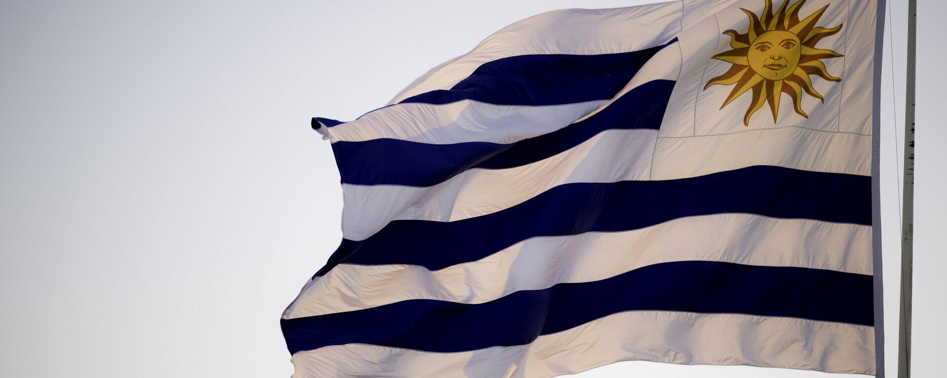 Bandera de Uruguay - Sputnik Mundo, 1920, 09.02.2021