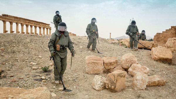 Zapadores rusos desminan la ciudad siria de Palmira - Sputnik Mundo