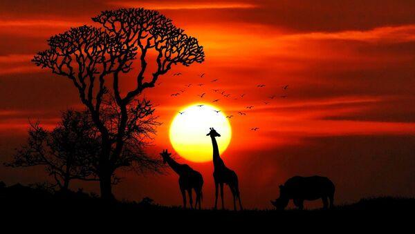 África, imagen referencial - Sputnik Mundo