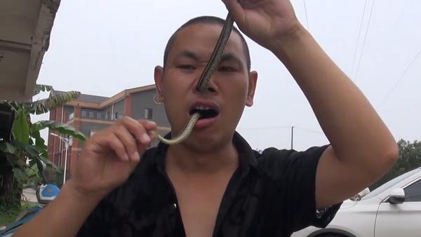 Impactante: maestro de kung fu se mete una serpiente por la nariz y la saca por la boca - Sputnik Mundo