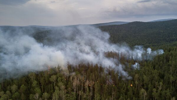Incendios forestales en Rusia - Sputnik Mundo