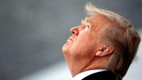 Donald Trump, presidente de Estados Unidos (archivo) - Sputnik Mundo