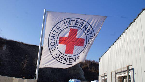 La bandera de la Cruz Roja - Sputnik Mundo