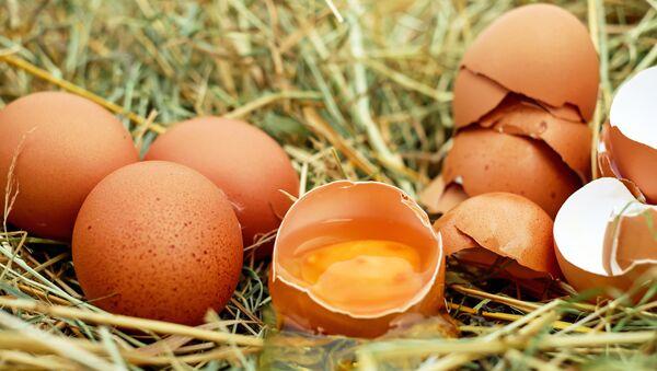 Huevo de gallina - Sputnik Mundo