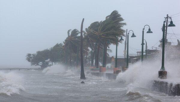 La llegada del huracán Irma en Puerto Rico - Sputnik Mundo