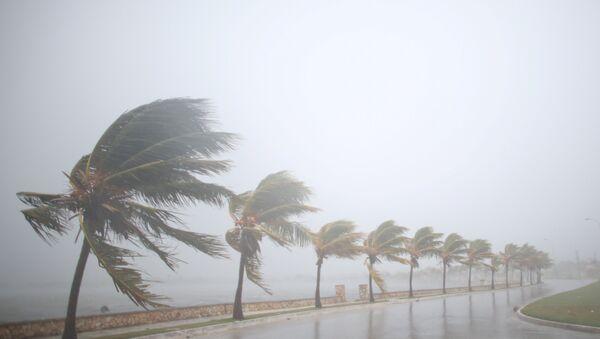 Huracán Irma se acerca a Cuba - Sputnik Mundo