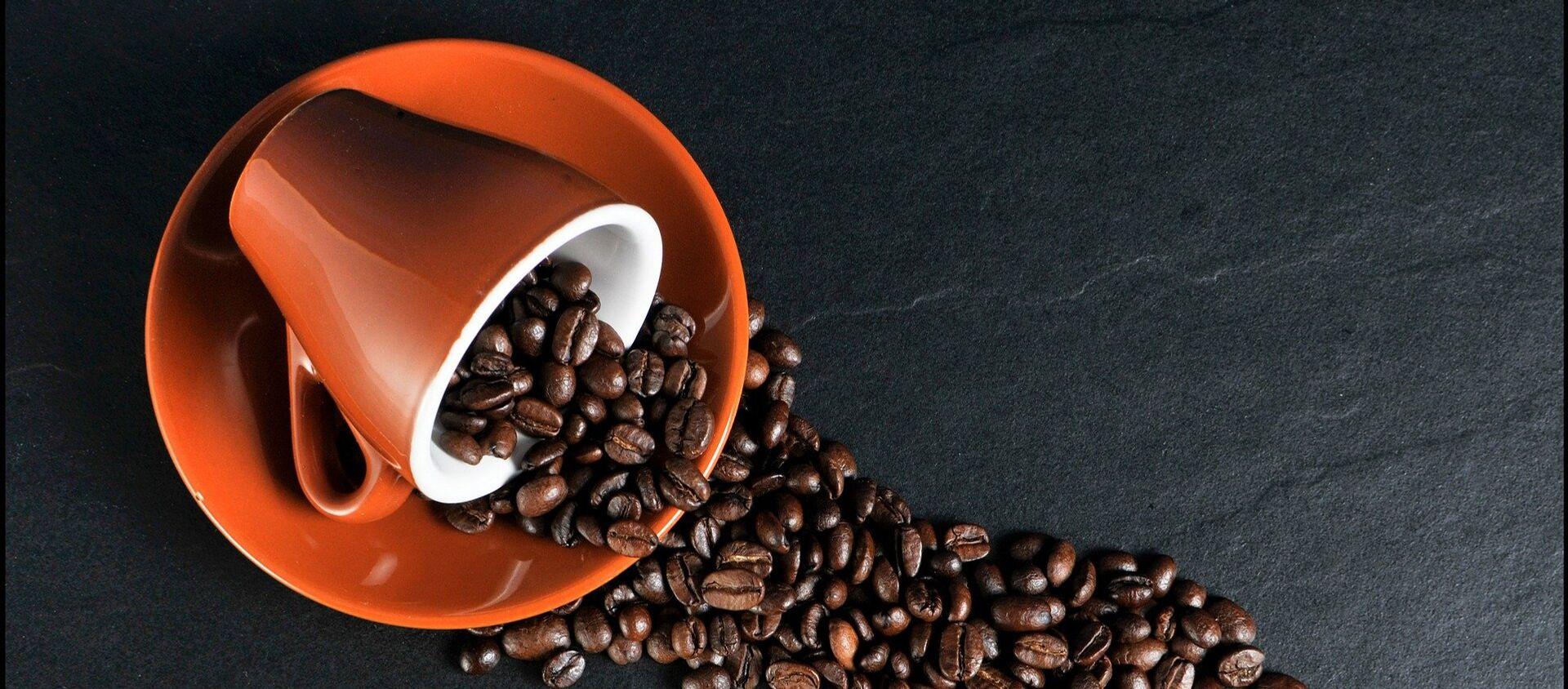 Granos de café - Sputnik Mundo, 1920, 19.11.2020