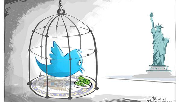 Así es como la censura estadounidense enjaula a Twitter - Sputnik Mundo
