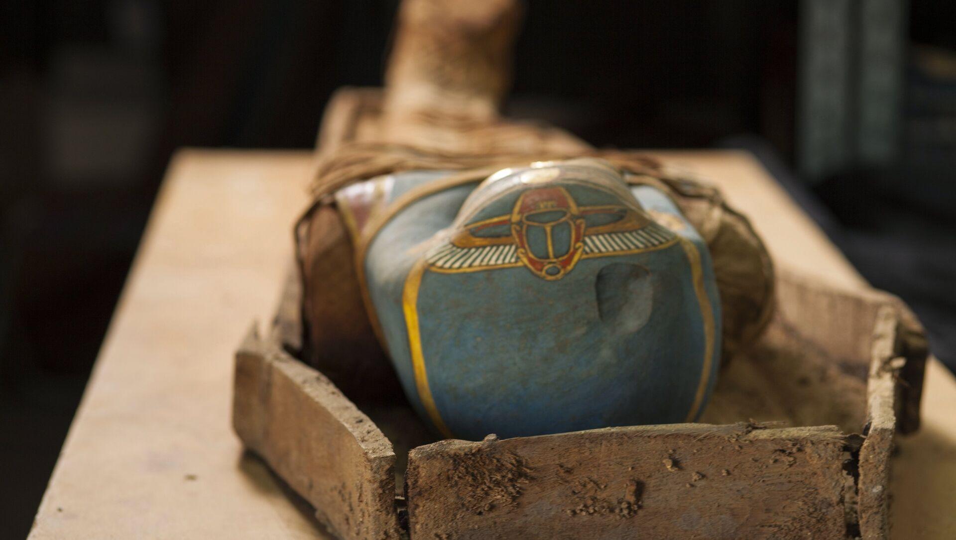 La momia descubierta en el oasis de El Fayum, Egipto - Sputnik Mundo, 1920, 04.02.2021