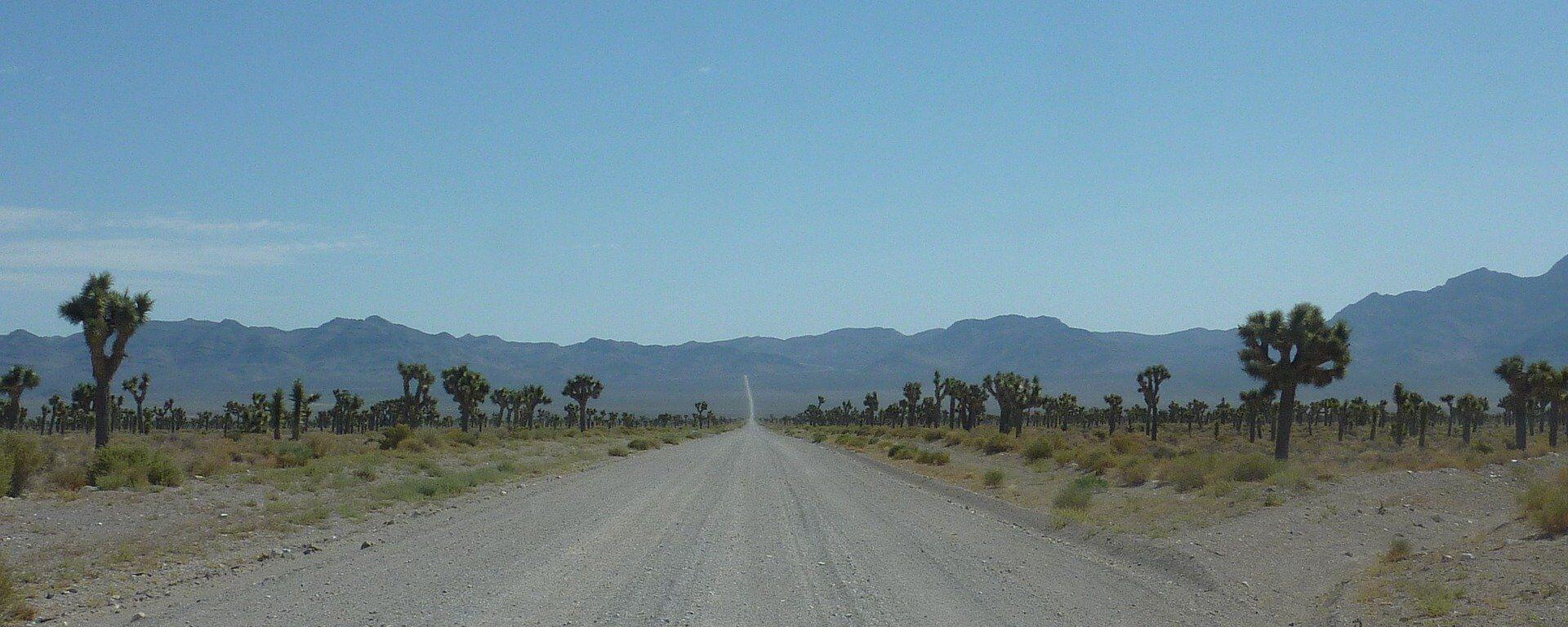 La carretera hacia el Área 51 - Sputnik Mundo, 1920, 11.03.2021