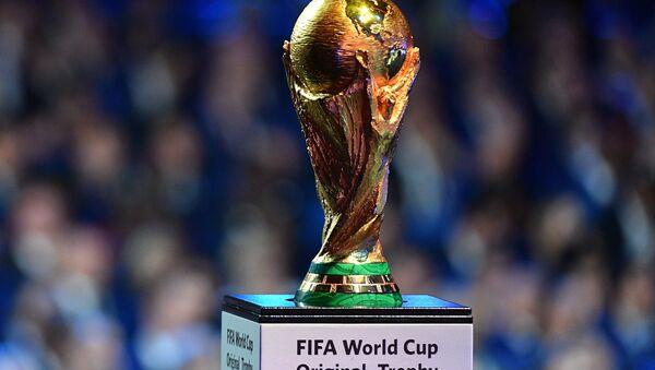El trofeo de la FIFA (imagen ilustrativa) - Sputnik Mundo