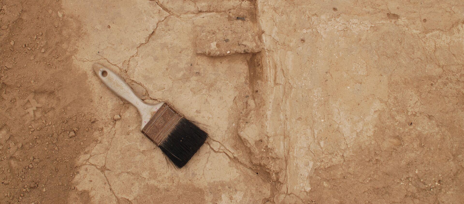 Excavación arqueológica (imagen referencial) - Sputnik Mundo, 1920, 04.01.2021