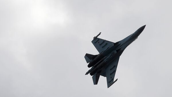 Un Su-27 ruso - Sputnik Mundo