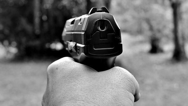 Una pistola (imagen referencial) - Sputnik Mundo