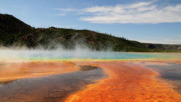 El Parque nacional de Yellowstone (imagen ilustrativa) - Sputnik Mundo