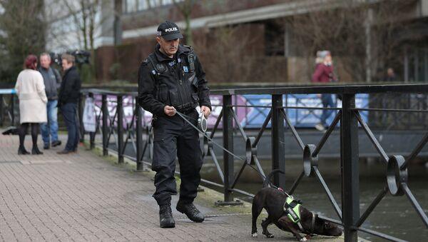 Un policía británico - Sputnik Mundo