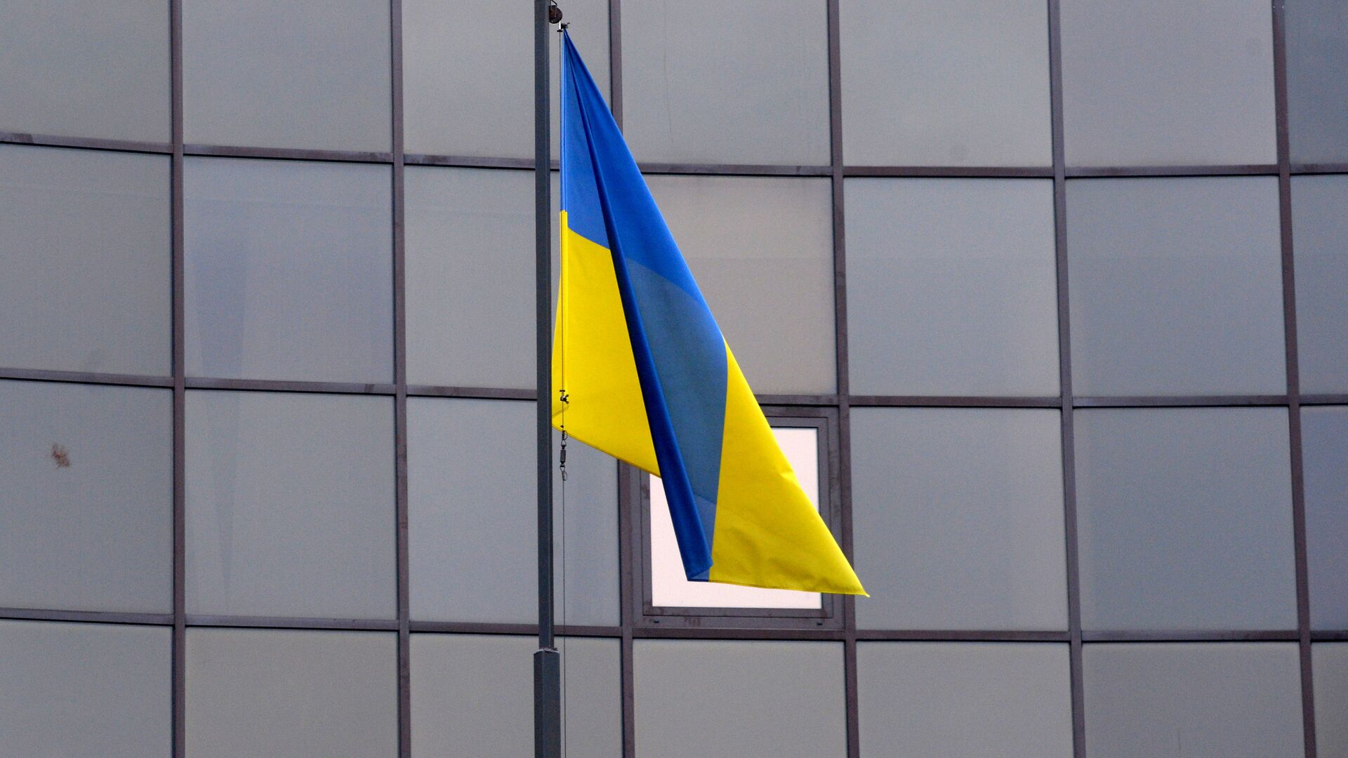 La bandera de Ucrania - Sputnik Mundo, 1920, 10.02.2021
