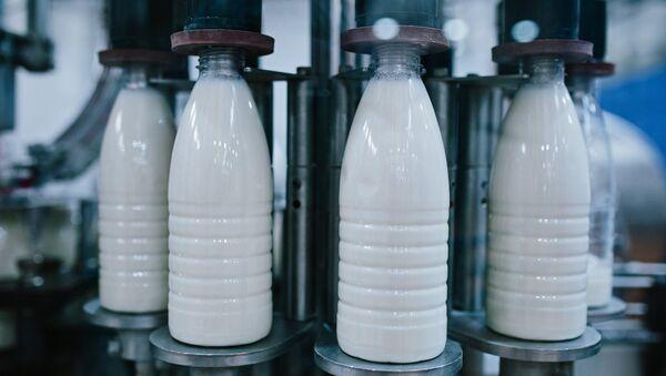 Una fábrica de leche - Sputnik Mundo