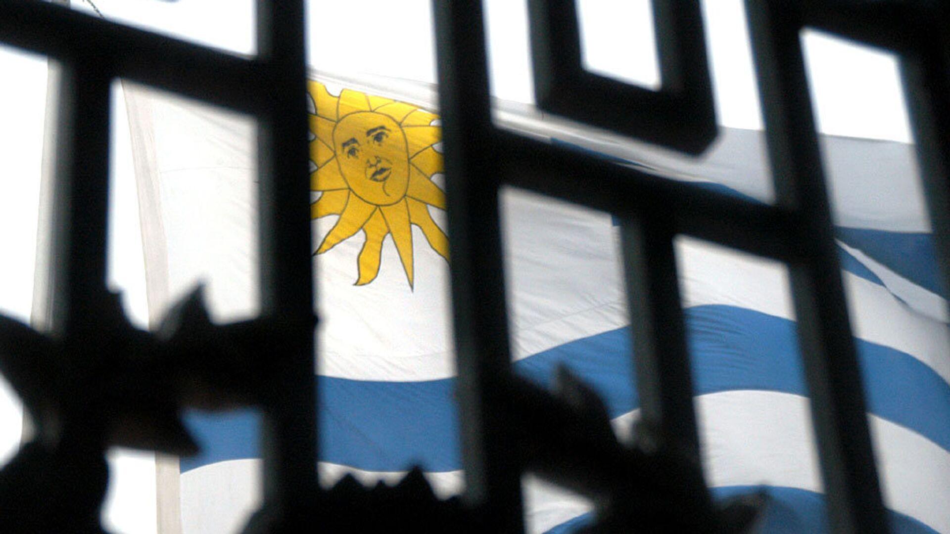 La bandera de Uruguay - Sputnik Mundo, 1920, 03.09.2021