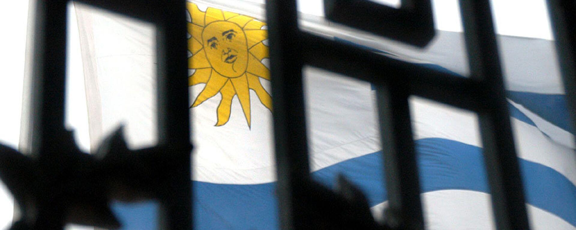La bandera de Uruguay - Sputnik Mundo, 1920, 05.10.2021