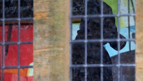 Un miembro de la unidad forense británica inspecciona el pub The Mill, en Salisbury, Reino Unido - Sputnik Mundo