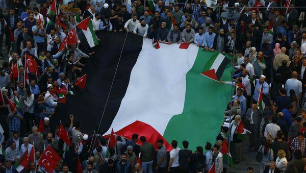 Manifestación en Estambul - Sputnik Mundo