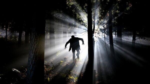 Un bosque terrible y la  terrible sombra de un hombre que pasea entre los árboles - Sputnik Mundo