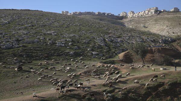 Un asentamiento israelí en Cisjordania - Sputnik Mundo