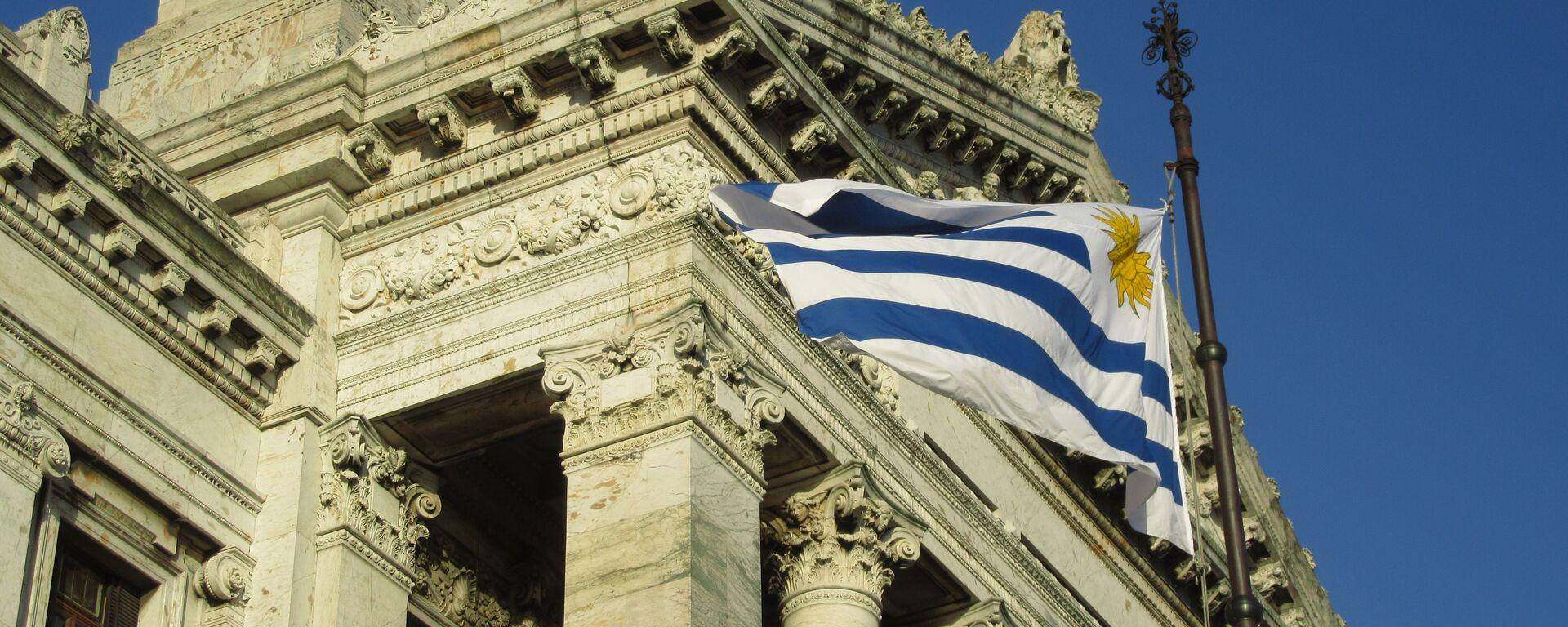 Palacio Legislativo de Uruguay - Sputnik Mundo, 1920, 01.08.2020