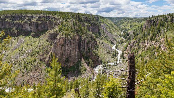 El parque nacional de Yellowstone, en Estados Unidos - Sputnik Mundo