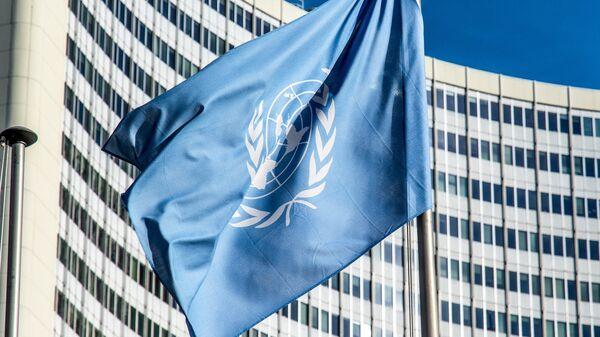 La bandera de la ONU - Sputnik Mundo
