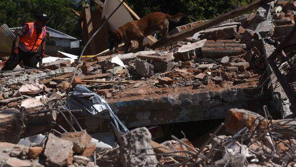 Consecuencias del terremoto en la isla de Lombok, Indonesia - Sputnik Mundo