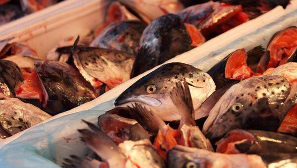 Pescado, imagen referencial - Sputnik Mundo